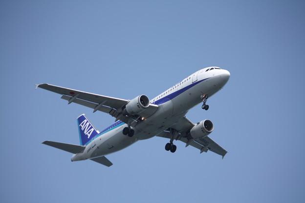 全日空 ANA A320-200 JA8946 (1)