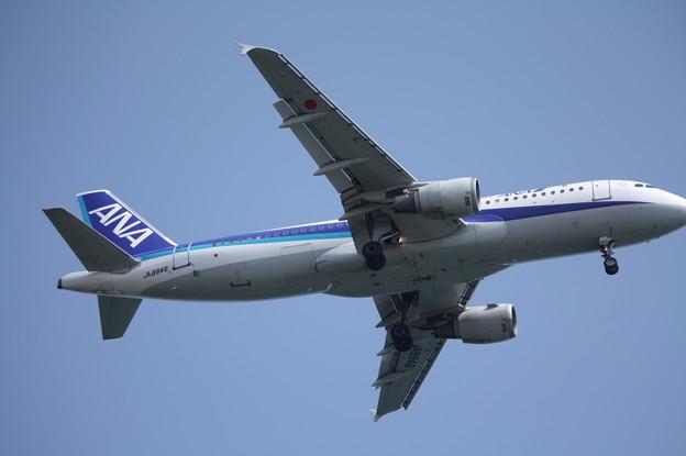 全日空 ANA A320-200 JA8946 (2)