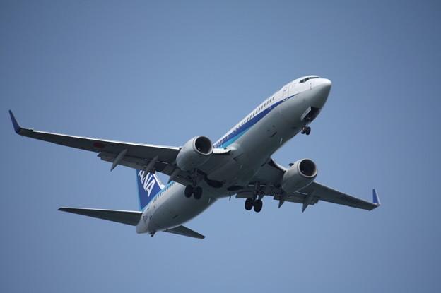 全日空 ANA B737-800 JA64AN