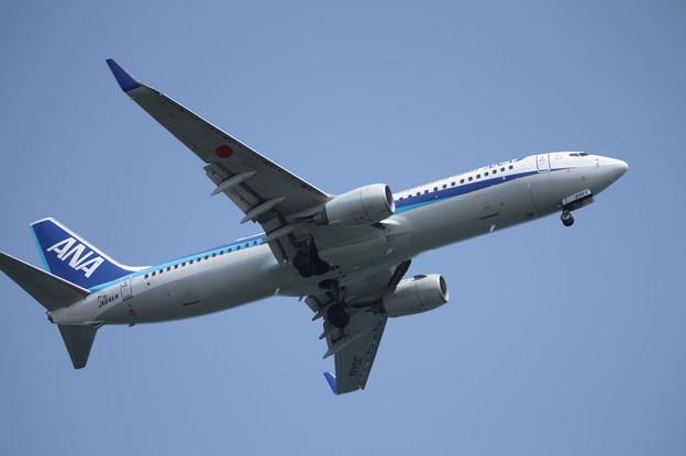 全日空 ANA B737-800 JA64AN (1)