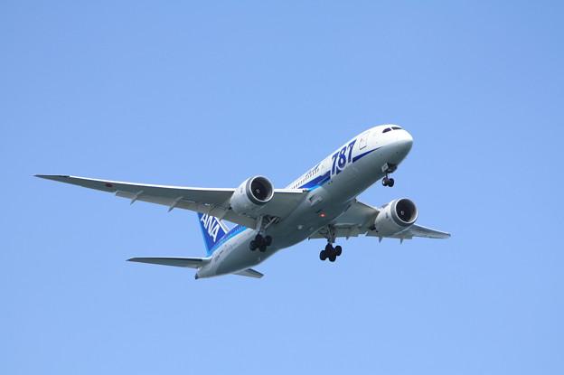 全日空 ANA B787-8 JA824A