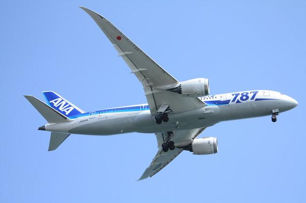 全日空 ANA B787-8 JA824A (1)