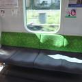 Photos: 山手線 E235系 4人掛け座席