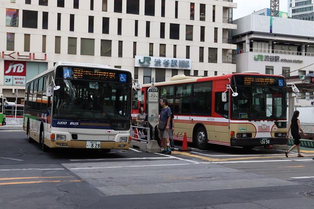 京王バス A828・A304