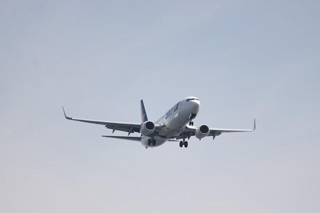 スカイマーク SKY B737-800 JA73AA