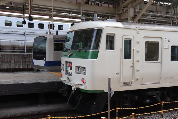 E531系・185系