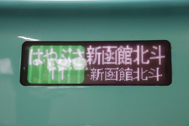 はやぶさ11号 新函館北斗 (6)