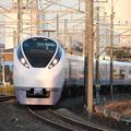 常磐線 E657系K10編成 80M 特急ときわ80号 品川 行 2019.11.09