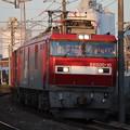 Photos: 常磐線 2094レ EH500-10牽引 2019.11.09 (14)
