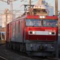 Photos: 常磐線 2094レ EH500-10牽引 2019.11.09 (15)