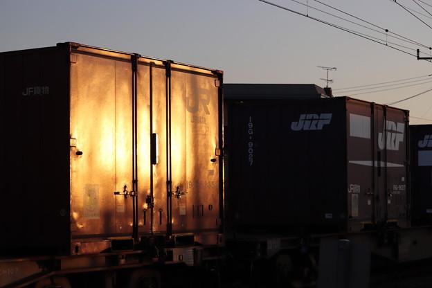 夕陽を浴びるコンテナと貨車 2019.11.09