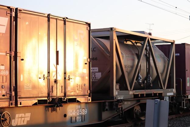 夕陽を浴びるコンテナと貨車 2019.11.09 (1)