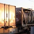 Photos: 夕陽を浴びるコンテナと貨車 2019.11.09 (1)