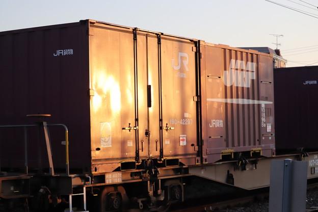夕陽を浴びるコンテナと貨車 2019.11.09 (2)