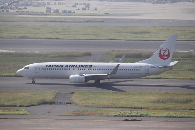 日本航空 JAL B737-800 JA323J