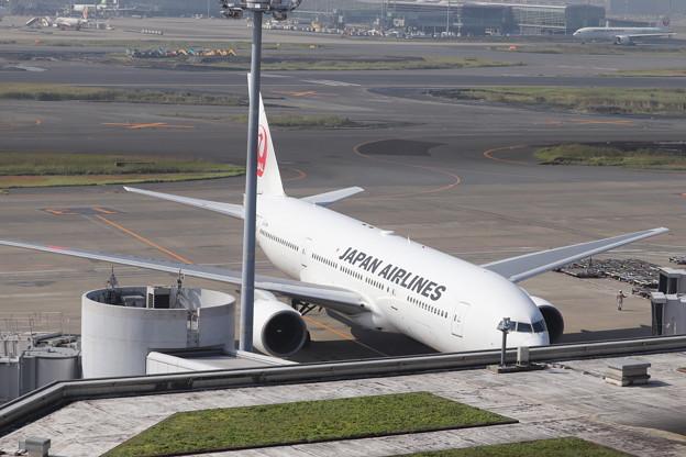 日本航空 JAL B777-200