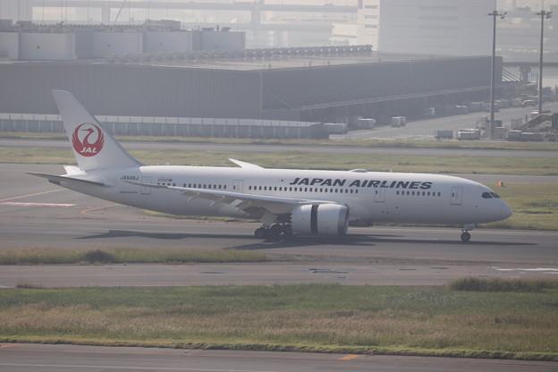 日本航空 JAL B787-8 JA846J