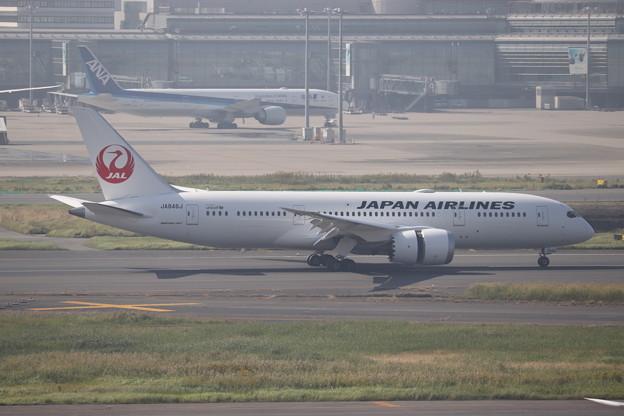 日本航空 JAL B787-8 JA846J (3)