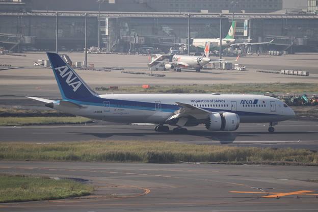 全日空 ANA B787-8 JA801A (1)