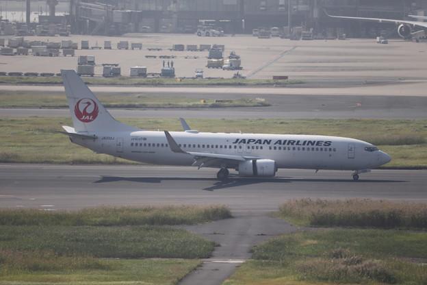 日本航空 JAL B737-800 JA332J (1)