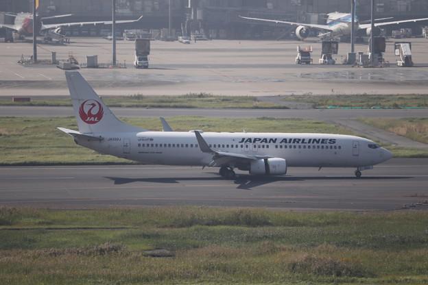 日本航空 JAL B737-800 JA332J (2)