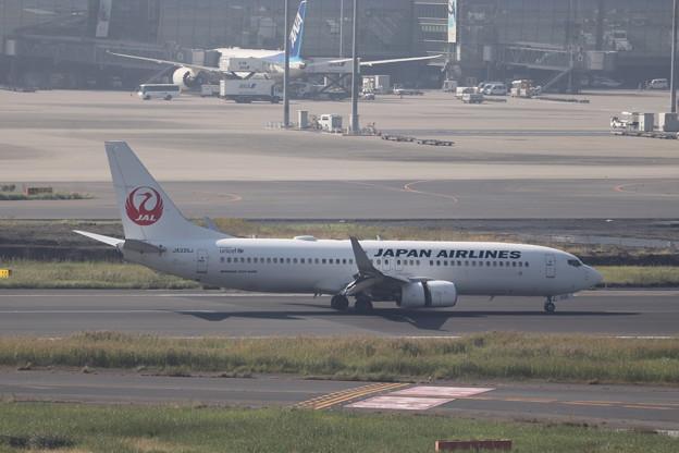 日本航空 JAL B737-800 JA335J (1)