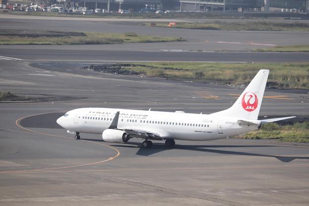 日本航空 JAL B737-800 JA347J
