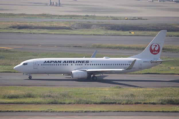 日本航空 JAL B737-800 JA347J (1)