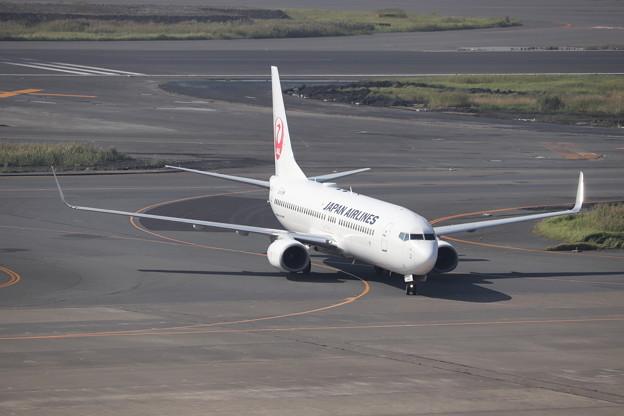 日本航空 JAL B737-800 JA335J
