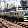 Photos: 東海道線 E231系1000番台K-08編成 (2)