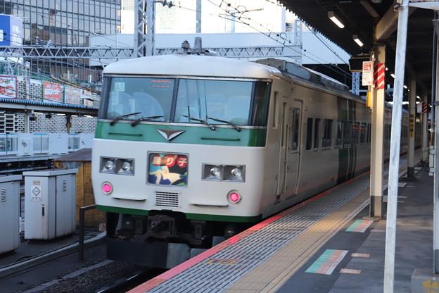 東海道線 185系A3編成 踊り子