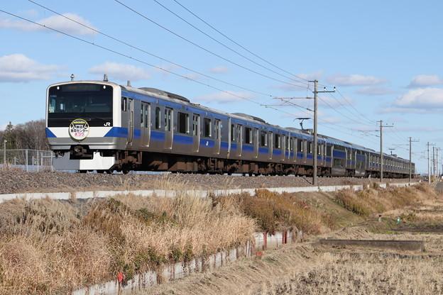常磐線 E531系K405編成 「勝田車両センターまつり」ヘッドマーク 394M 普通 上野 行 2020.01.04