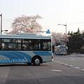 桜満開で県庁バスターミナルを発車する関東鉄道バス