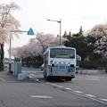 桜満開で県庁バスターミナルを発車する関東鉄道バス (1)