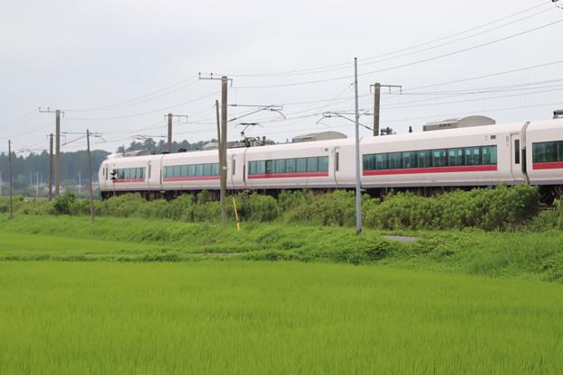 梅雨の田園風景を通過するE657系 2020.07.19 (8)