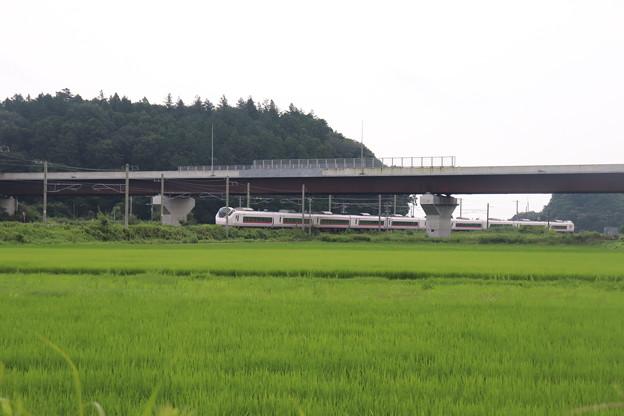 夏の梅雨空の田園風景を行くE657系 2020.07.25