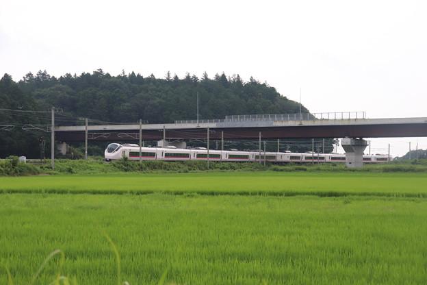 Photos: 夏の梅雨空の田園風景を行くE657系 2020.07.25 (1)