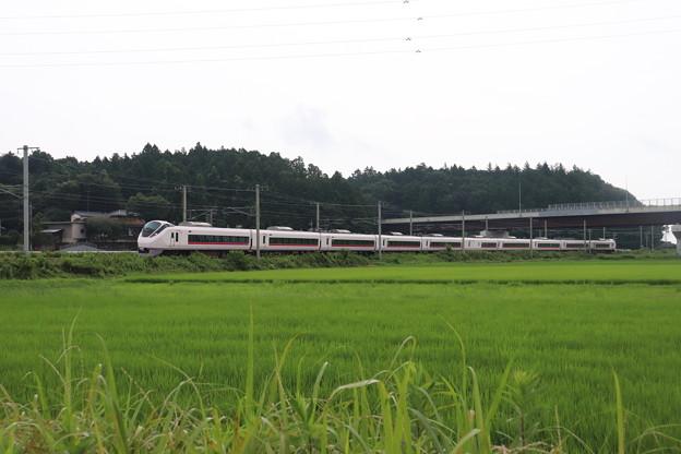 Photos: 夏の梅雨空の田園風景を行くE657系 2020.07.25 (2)