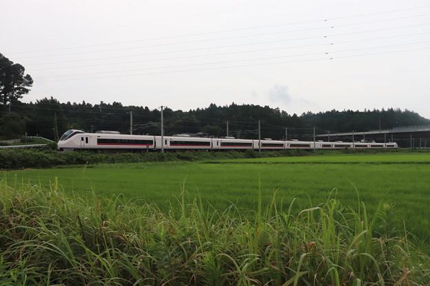 夏の梅雨空の田園風景を行くE657系 2020.07.25 (3)