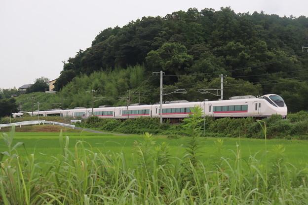 Photos: 夏の梅雨空の田園風景を行くE657系 2020.07.25 (4)