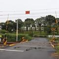 Photos: 常磐線 高浜道踏切