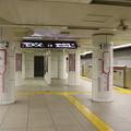 Photos: 都営地下鉄大江戸線 上野御徒町駅 ホーム