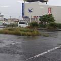 Photos: 水戸の風景 2020.06.13_04