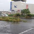 Photos: 水戸の風景 2020.06.13_05
