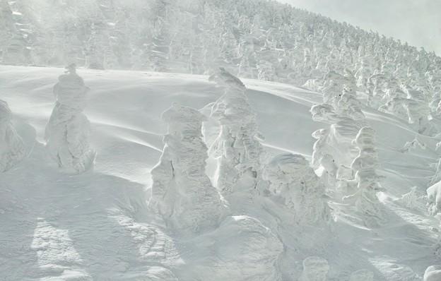 02.蔵王のモンスター、樹氷たち その2