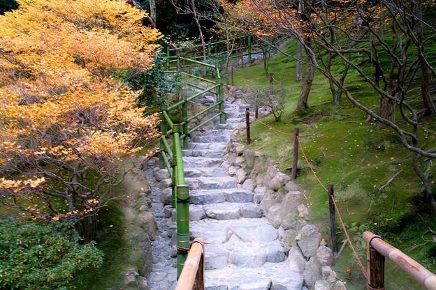 11.展望所への登り階段