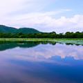 Photos: 大沢の池