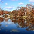 大沼公園 紅葉