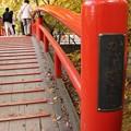 Photos: 河鹿橋 かじかばし