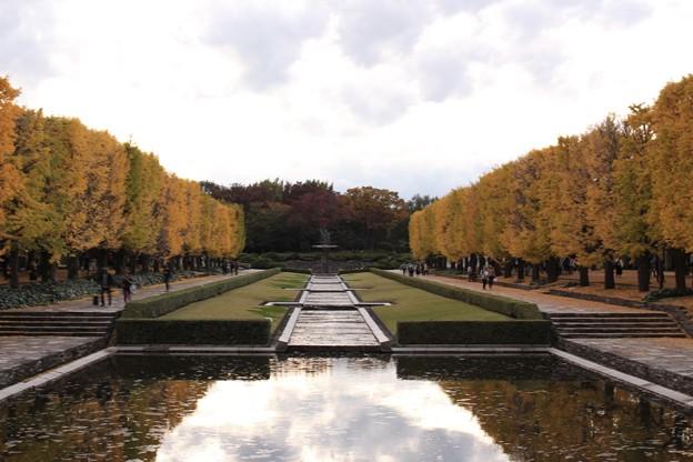 立川口カナール